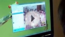 Skype Service with Word of Life Church in Pakistan